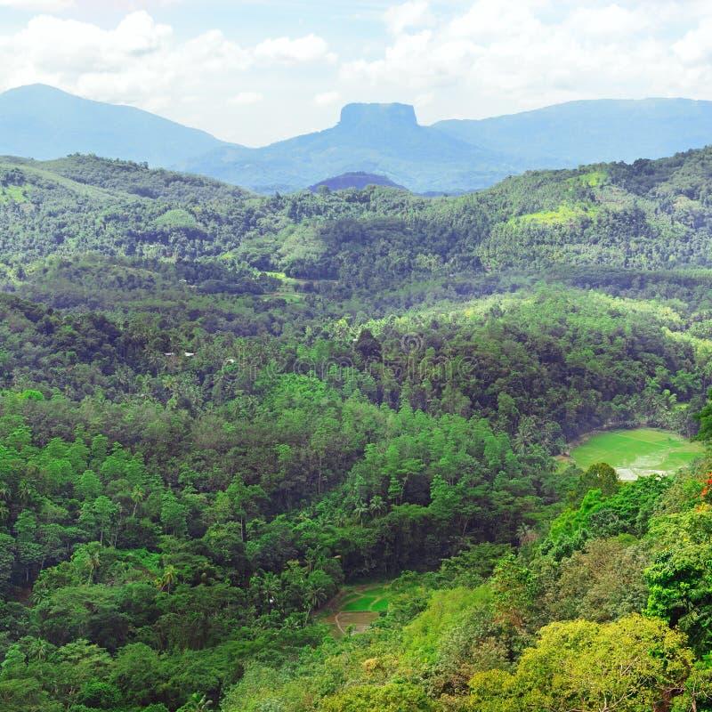 Βουνά στο νησί της Σρι Λάνκα στοκ εικόνες με δικαίωμα ελεύθερης χρήσης