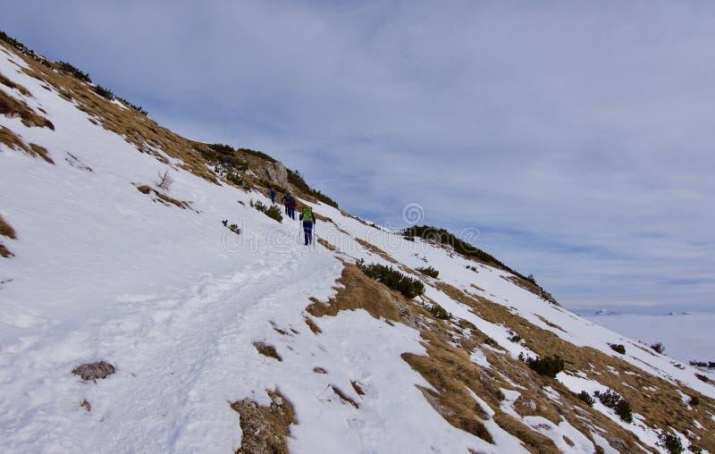 Βουνά στο χιόνι στοκ εικόνες