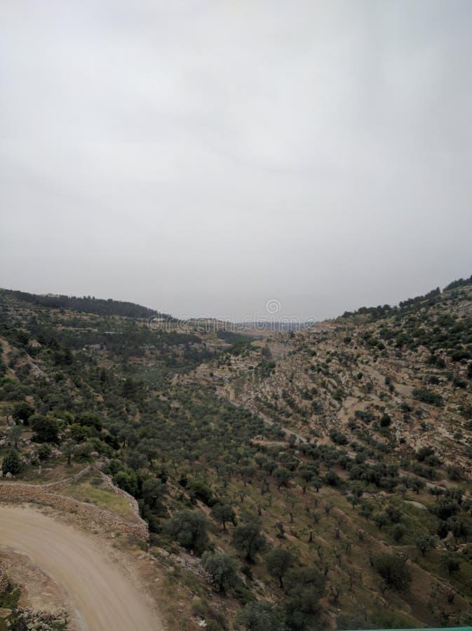 Βουνά της Ιερουσαλήμ στοκ εικόνα