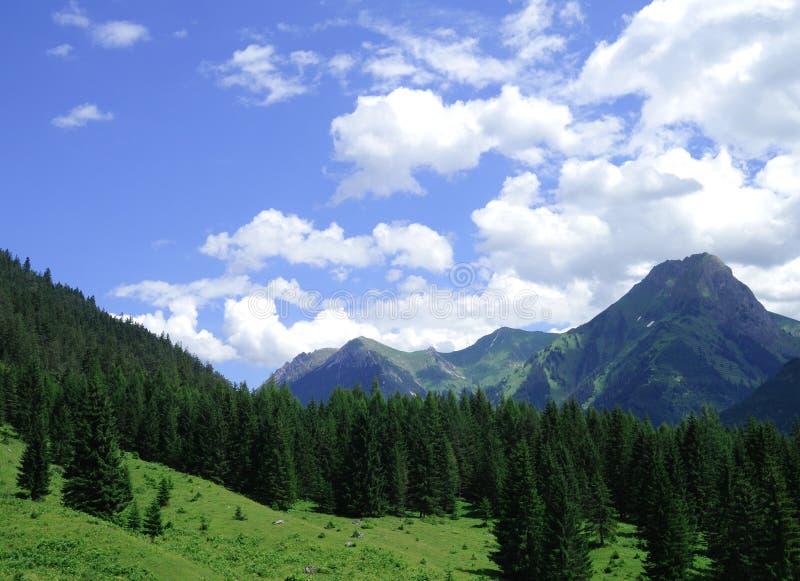 Βουνά Bautiful στοκ εικόνες