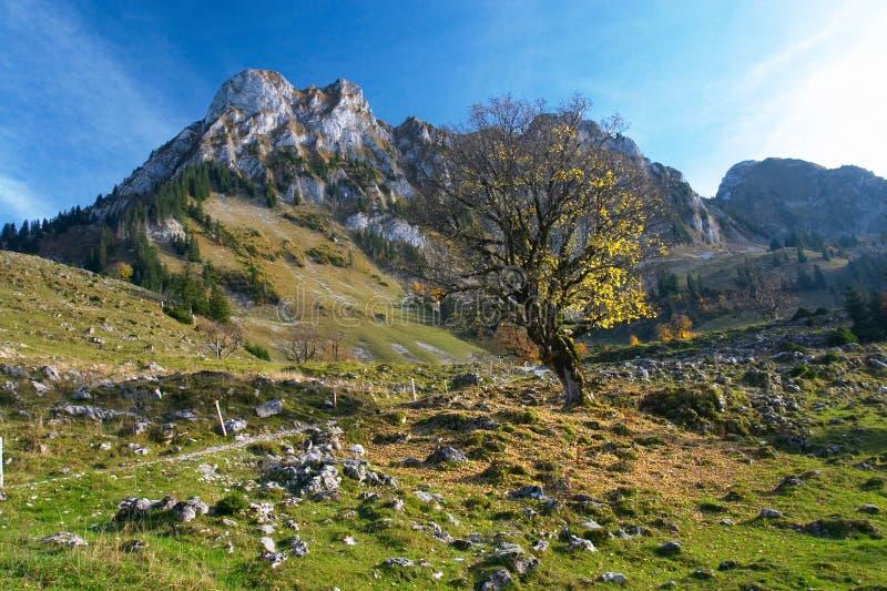 βουνά Jura φθινοπώρου στοκ εικόνες με δικαίωμα ελεύθερης χρήσης
