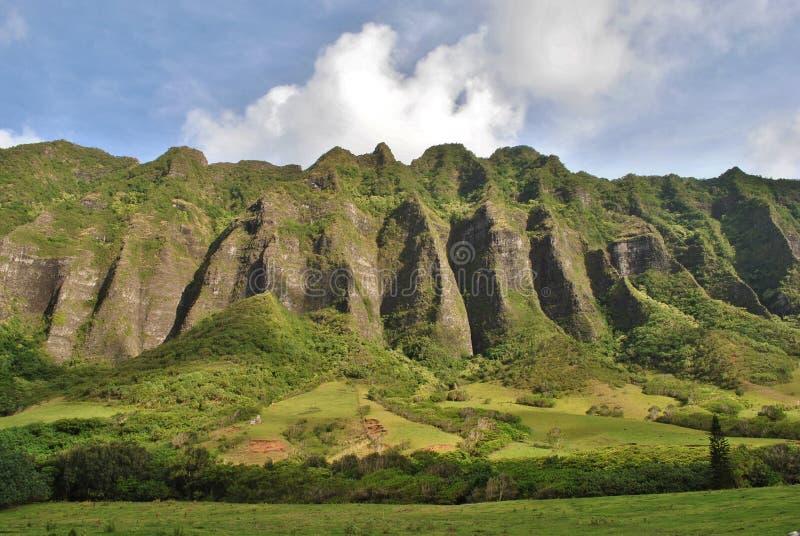 Βουνά Oahu Χαβάη αγροκτημάτων Kualoa στοκ εικόνες