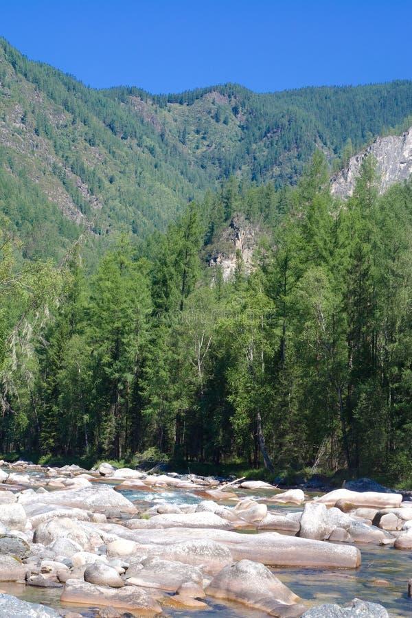 βουνά sayan στοκ φωτογραφία