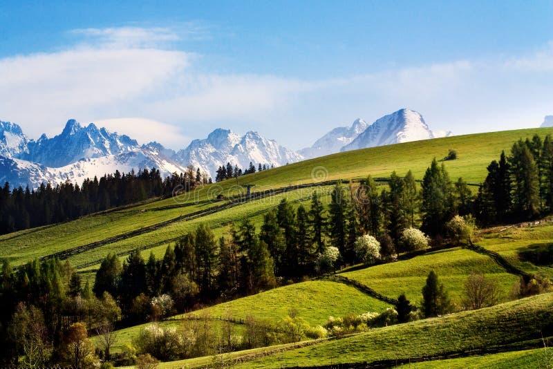βουνά tatry