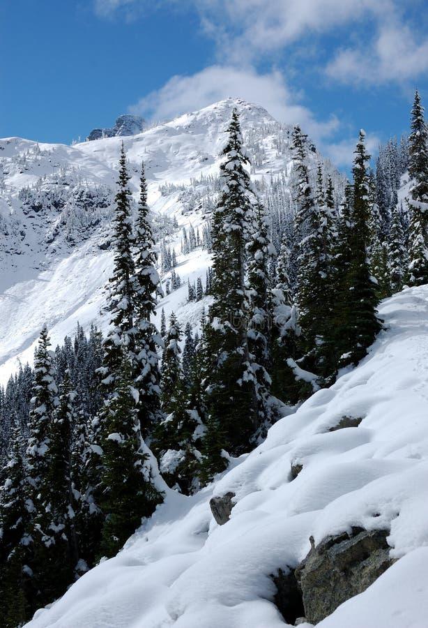 βουνοπλαγιές καταρρακ& στοκ φωτογραφίες με δικαίωμα ελεύθερης χρήσης