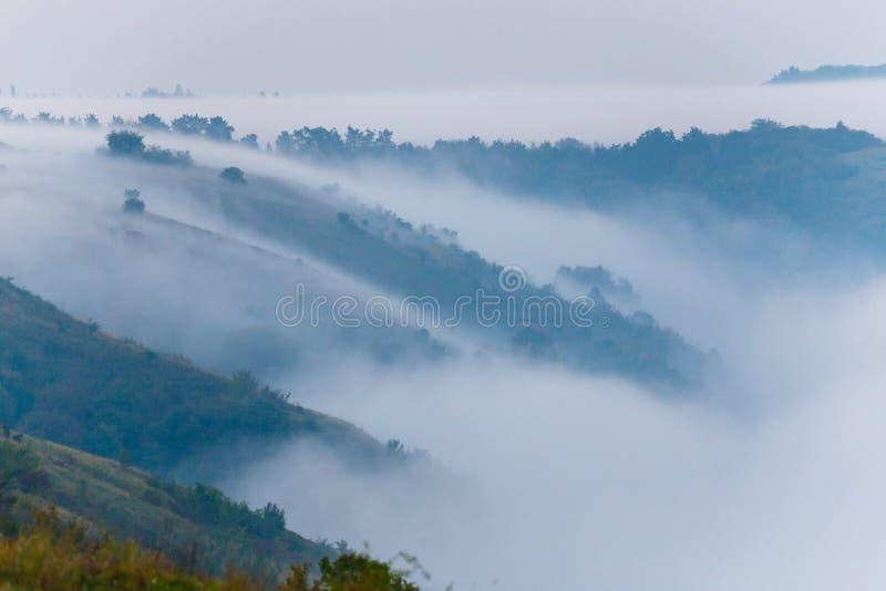 Βουνοπλαγιές που καλύπτονται με τα παχιά ξημερώματα ομίχλης, Ουκρανία στοκ φωτογραφία με δικαίωμα ελεύθερης χρήσης