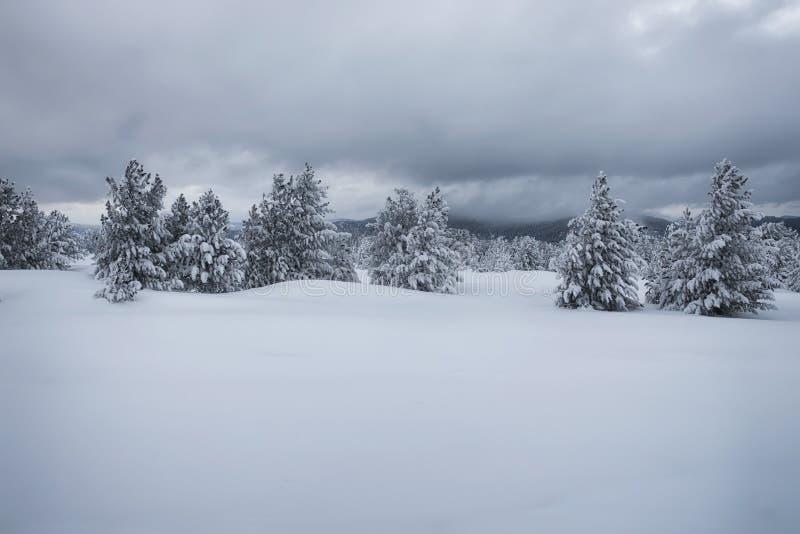 Βουνοπλαγιές το χειμώνα στοκ φωτογραφία με δικαίωμα ελεύθερης χρήσης