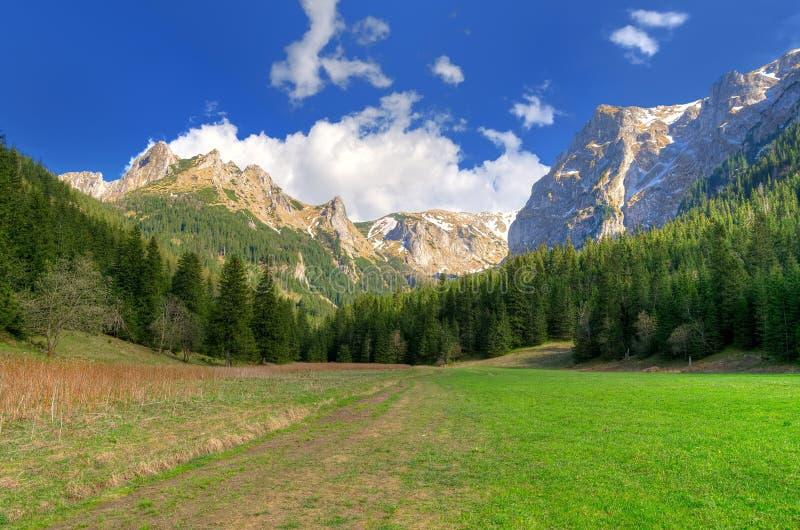 Βουνό άνοιξη ladnscape στοκ εικόνες