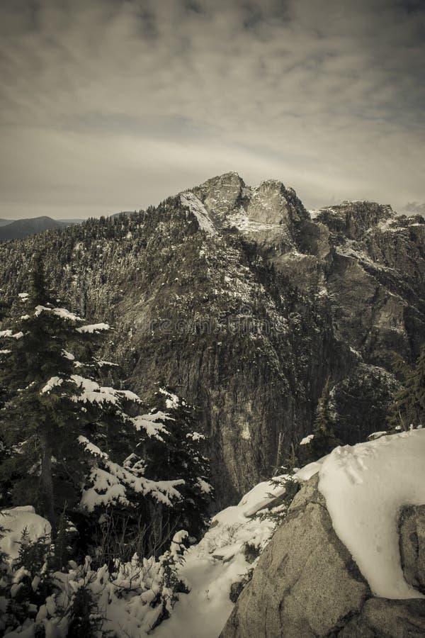 Βουνό κορωνών στοκ εικόνες