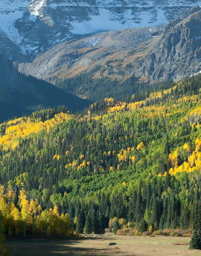 βουνό λιβαδιών στοκ φωτογραφία