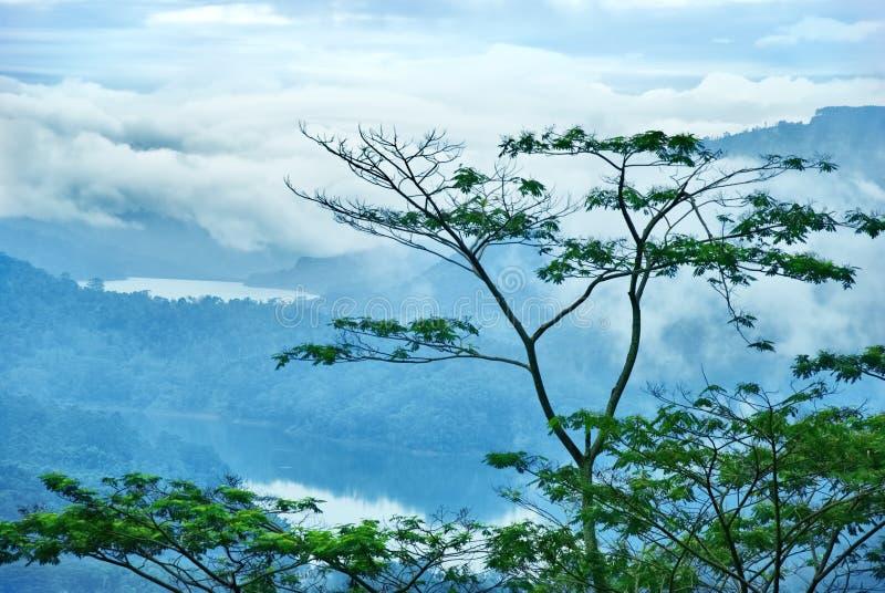 Download βουνό λιμνών της Κεϋλάνης στοκ εικόνες. εικόνα από ημέρα - 22795226