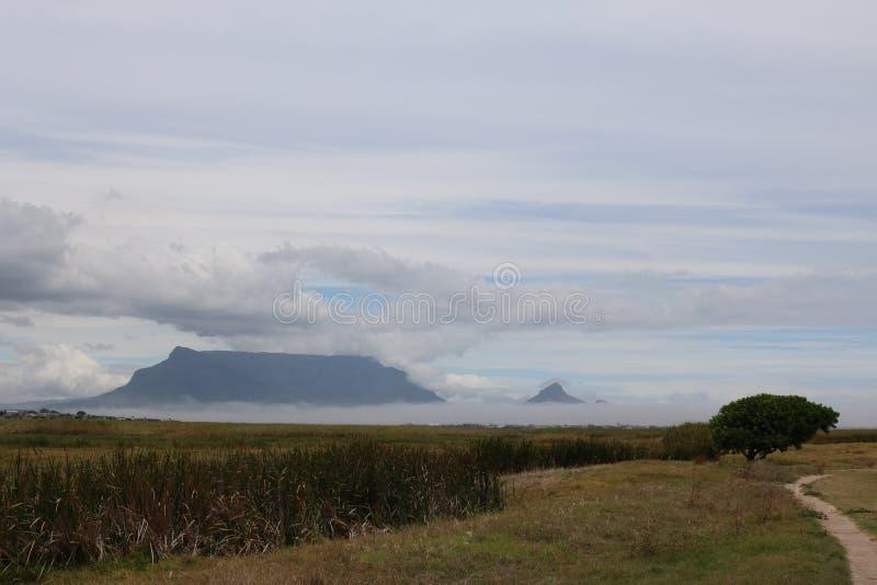 Βουνό που αντιμετωπίζεται επιτραπέζιο από την επιφύλαξη φύσης επιτραπέζιων κόλπων Rietvlei Καίηπ Τάουν στοκ εικόνες με δικαίωμα ελεύθερης χρήσης