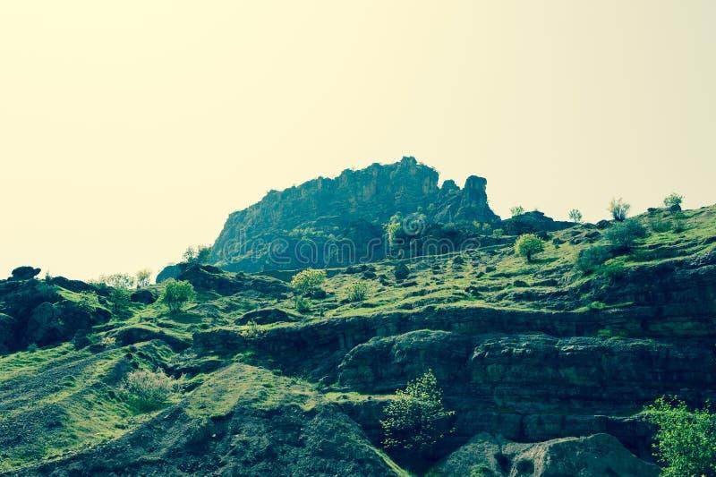Βουνό που καλύπτεται στην πράσινη χλόη και τα μικρά δέντρα στοκ φωτογραφία με δικαίωμα ελεύθερης χρήσης