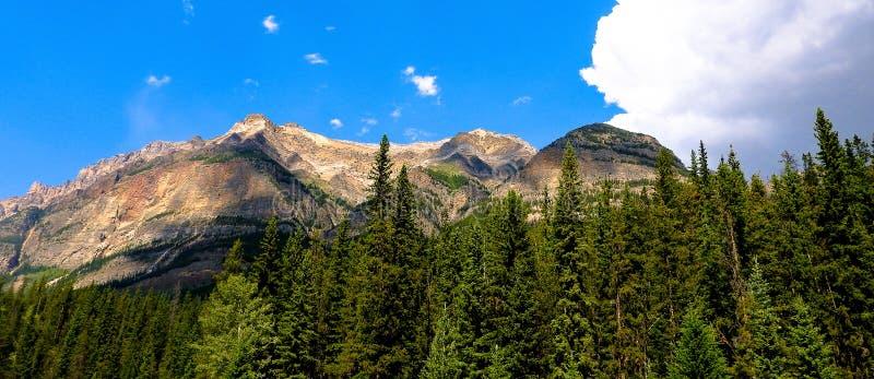 Βουνό που περιβάλλεται δύσκολο από τα πεύκα στοκ φωτογραφίες