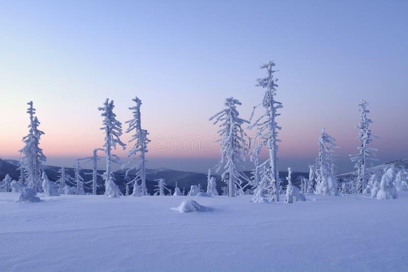 βουνό πρωινού στοκ φωτογραφία με δικαίωμα ελεύθερης χρήσης