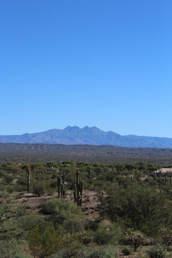 Βουνό τεσσάρων αιχμών μέσα, εθνικό δρυμός Tonto, Αριζόνα, Ηνωμένες Πολιτείες στοκ εικόνα με δικαίωμα ελεύθερης χρήσης