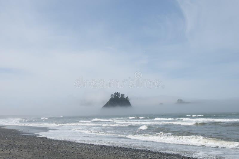 Βουνό της Misty με το δάσος στην ακτή στην παραλία Rialto Ολυμπιακό εθνικό πάρκο, WA στοκ εικόνα με δικαίωμα ελεύθερης χρήσης