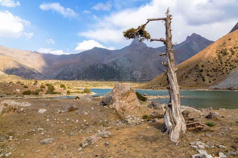 Βουνό του Τατζικιστάν όμορφο, βουνό Fann, λίμνες Kulikalon στοκ φωτογραφία με δικαίωμα ελεύθερης χρήσης