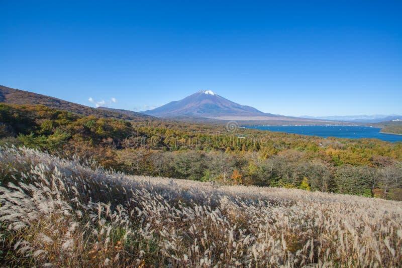 Βουνό Φούτζι και λίμνη Yamanaka στοκ εικόνα με δικαίωμα ελεύθερης χρήσης