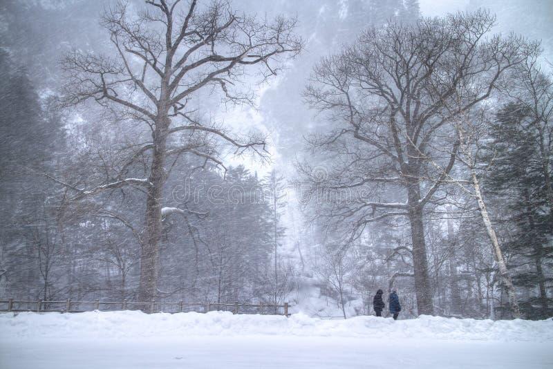 Βουνό χιονιού στο Hokkaido, Ιαπωνία στοκ φωτογραφία με δικαίωμα ελεύθερης χρήσης