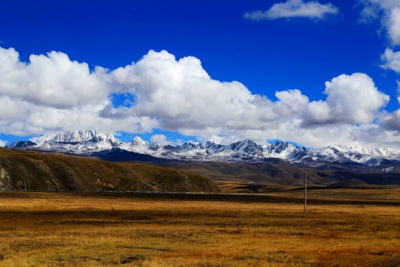 Βουνό χιονιού Yala και λιβάδι Tagong στοκ φωτογραφίες με δικαίωμα ελεύθερης χρήσης