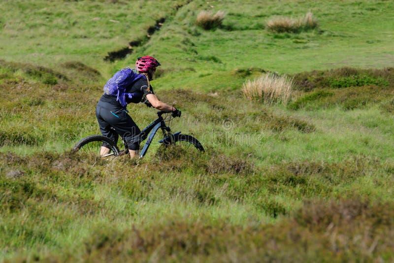 Βουνό Biking Ουαλία στοκ φωτογραφία με δικαίωμα ελεύθερης χρήσης
