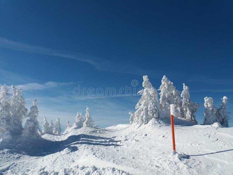 Βουνό Jahorina - χιονοδρομικό κέντρο στοκ φωτογραφία