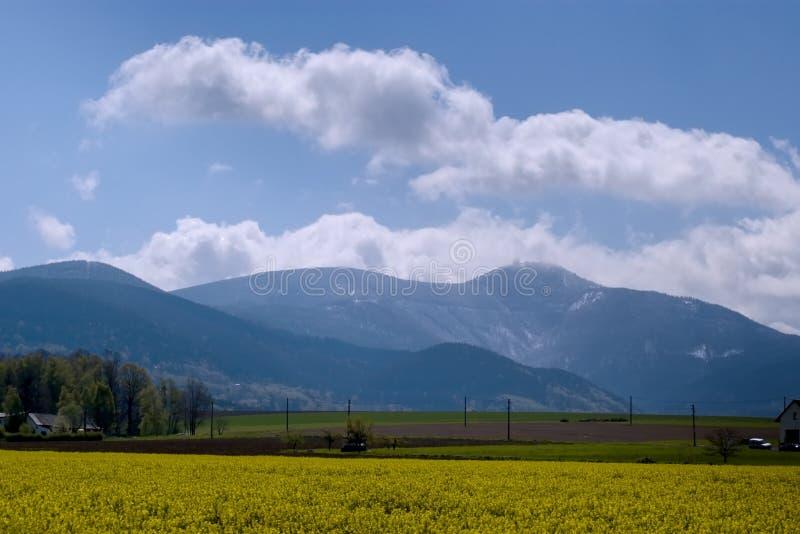 Βουνό Lysa άνοιξη στοκ εικόνες