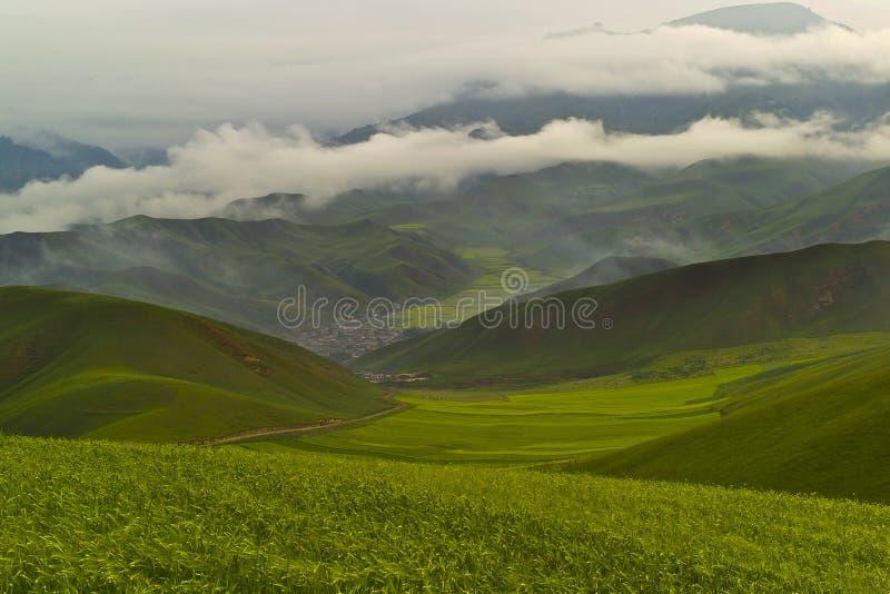 βουνό qilian στοκ εικόνες