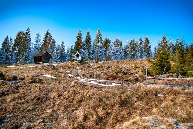 Βουνών στο λιβάδι στοκ φωτογραφία με δικαίωμα ελεύθερης χρήσης