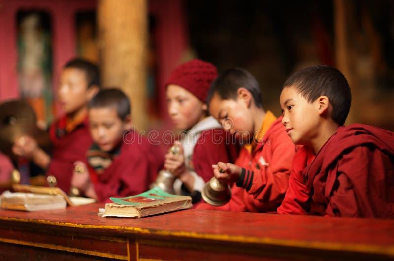 Βουδιστικοί αρχάριοι, Ladakh στοκ εικόνες με δικαίωμα ελεύθερης χρήσης