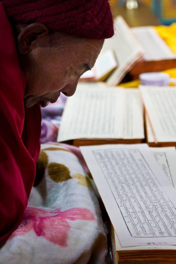Βουδιστικός μοναχός που προσεύχεται σε ένα μοναστήρι στοκ φωτογραφία με δικαίωμα ελεύθερης χρήσης