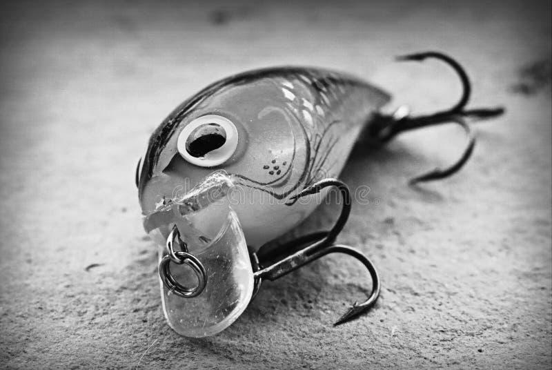 Βούλωμα θελγήτρου αλιείας ακροχορδώνων θύελλας wiggle στοκ φωτογραφία