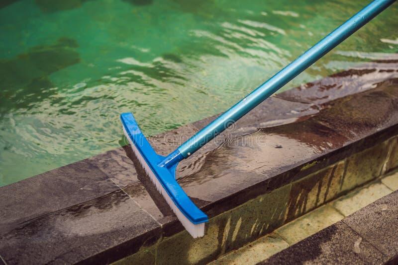 Βούρτσα για τον καθαρισμό της λίμνης στην πλευρά της λίμνης στοκ φωτογραφία