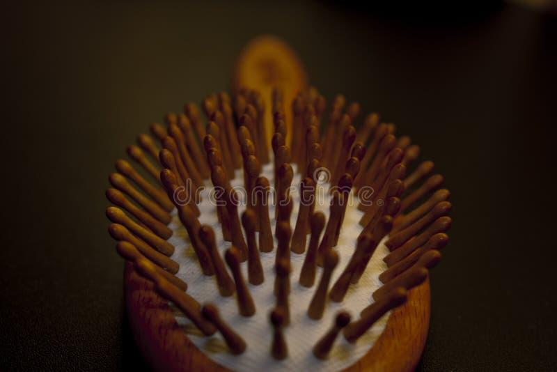 Βούρτσα τριχώματος στοκ εικόνα