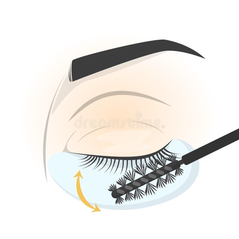 Βούρτσισμα eyelash στο μάτι πρίν εφαρμόζει το πλαστό μαστίγιο διανυσματική απεικόνιση