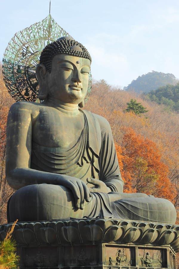 Βούδας στο ναό Sinheungsa στο εθνικό πάρκο Seoraksan,  στοκ εικόνες με δικαίωμα ελεύθερης χρήσης