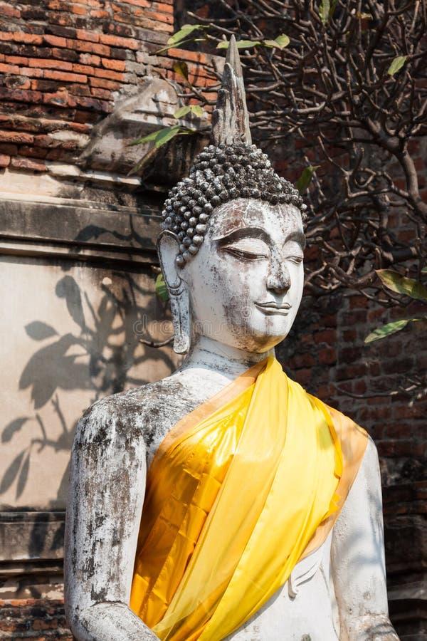 Βούδας του αγάλματος σε Ayutthaya Ταϊλάνδη στοκ εικόνες με δικαίωμα ελεύθερης χρήσης