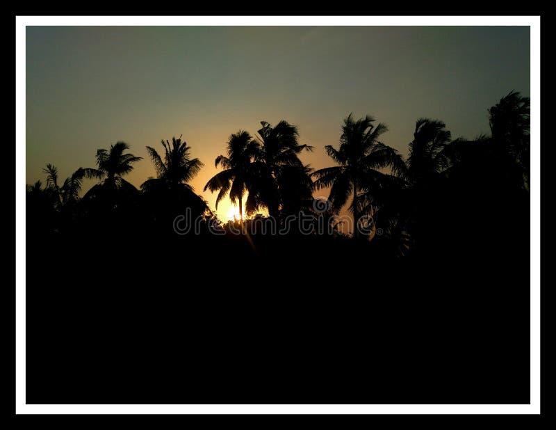 Βράδυ ουρανού δέντρων ήλιων στο χωριό στοκ φωτογραφία με δικαίωμα ελεύθερης χρήσης