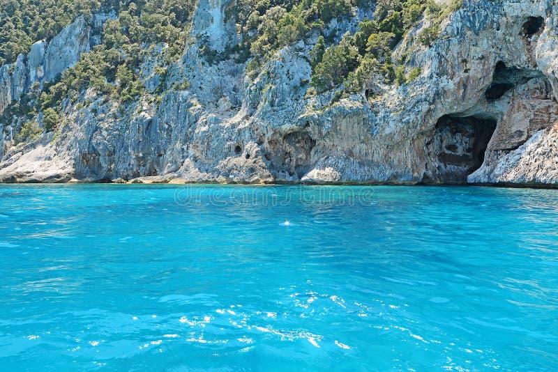 Βράχοι, εγκαταστάσεις και θάλασσα στοκ εικόνα με δικαίωμα ελεύθερης χρήσης