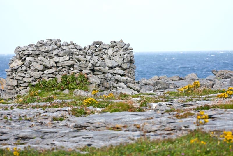 Βράχοι και βλάστηση στην παραλία Doolin, νομός Clare, Ιρλανδία στοκ φωτογραφίες
