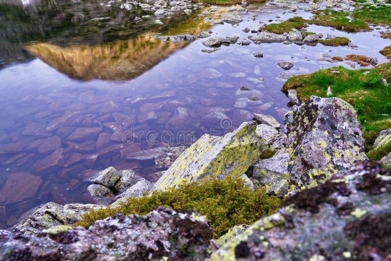 Βράχοι με τις πράσινες λειχήνες, το πορφυρό φως ηλιοβασιλέματος, και μια μέγιστη απεικόνιση βουνών στη λίμνη Bucura, βουνά Carpat στοκ φωτογραφία