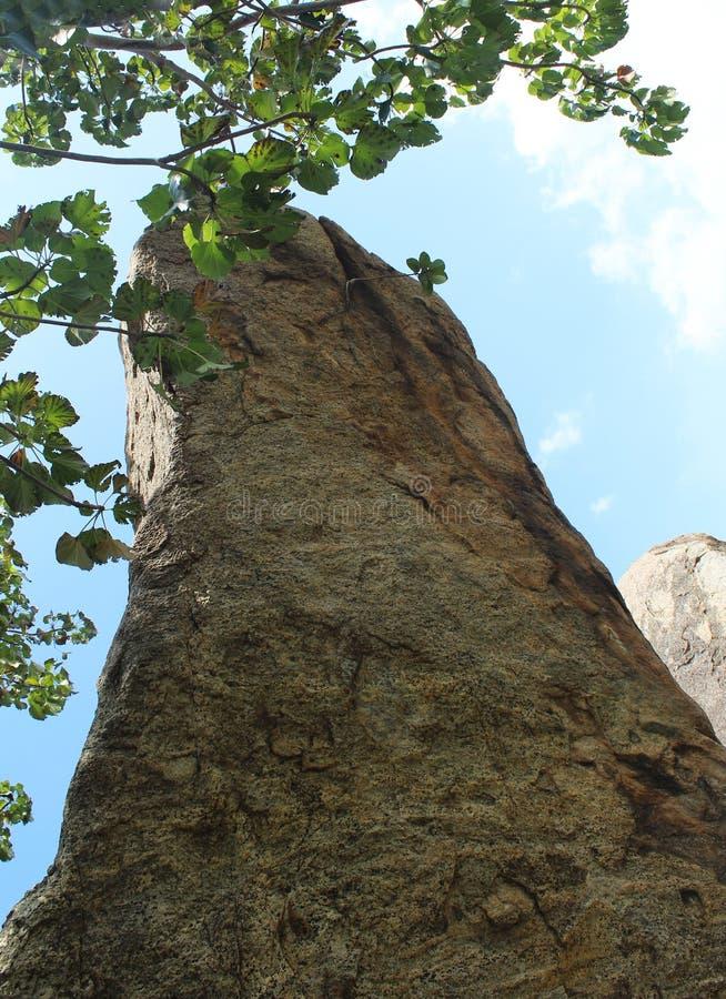 Βράχοι Hill και τοπίο δέντρων στοκ φωτογραφίες