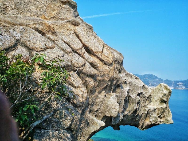 βράχος ρινοκέρων στοκ φωτογραφία με δικαίωμα ελεύθερης χρήσης