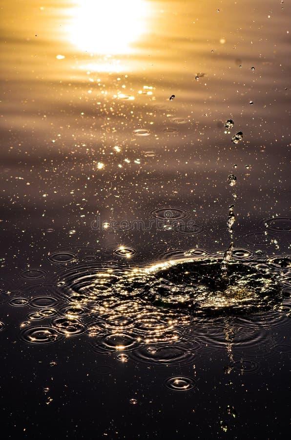 Βράχος σε μια λίμνη στοκ φωτογραφίες