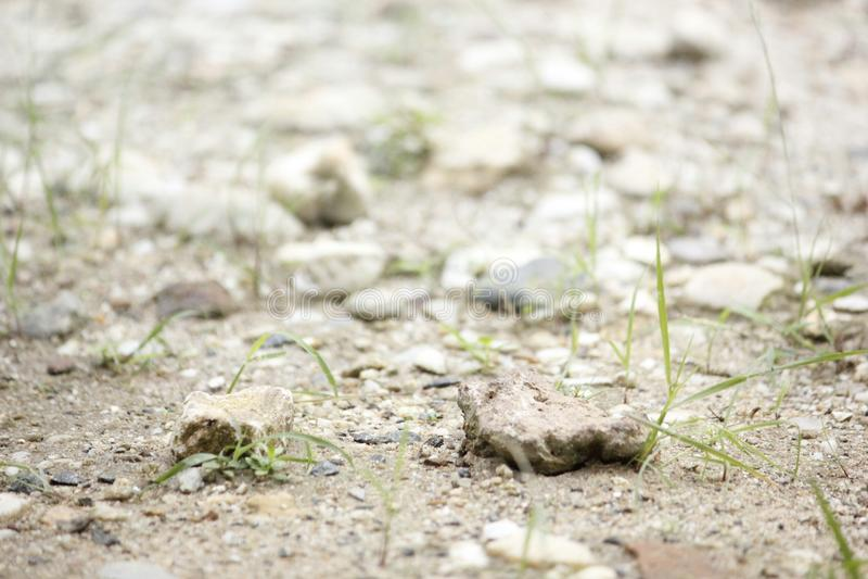 Βράχος στο χώμα στοκ φωτογραφίες με δικαίωμα ελεύθερης χρήσης