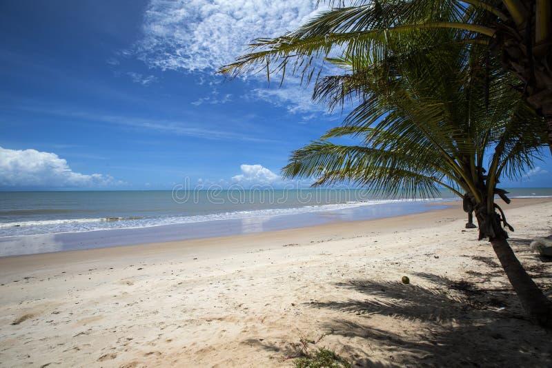Βραζιλιάνα ακτή παραλιών μια ηλιόλουστη ημέρα Barra do Cahy, Bahia, BR στοκ φωτογραφία με δικαίωμα ελεύθερης χρήσης
