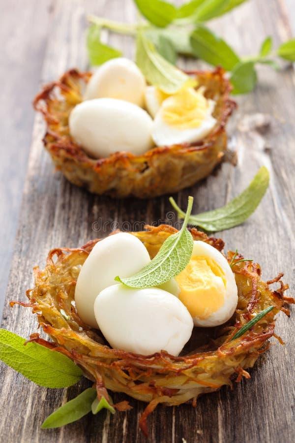 Βρασμένα αυγά στις φωλιές στοκ εικόνες