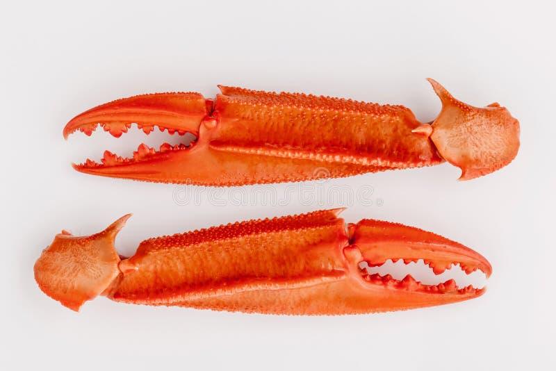 Download Βρασμένα νύχια καβουριών που απομονώνονται στο άσπρο υπόβαθρο για τα καβούρια και τη θάλασσα Στοκ Εικόνες - εικόνα από μεσογειακός, διαφημίζει: 62700566