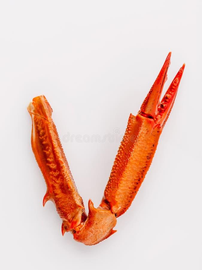 Download Βρασμένα νύχια καβουριών που απομονώνονται στο άσπρο υπόβαθρο για τα καβούρια και τη θάλασσα Στοκ Εικόνα - εικόνα από μεσογειακός, υγιής: 62700629
